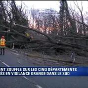 Vents violents en Ardèche: des arbres renversés sur la chaussée