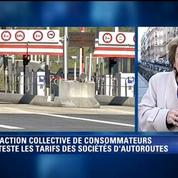 Corinne Lepage lance une class action contre les sociétés d'autoroutes