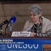 Consternation à l'Unesco après la destruction d'œuvres au musée de Mossoul