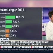 Quels sont les meilleurs fonds de gestion de l'année 2014 ?: Vincent Zeller