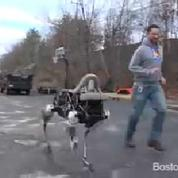 Découvrez Spot, le robot-chien aussi vrai que nature