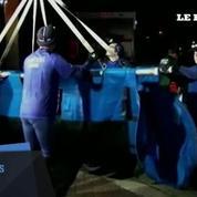 19 lamantins pris au piège dans une canalisation