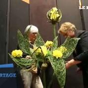 Horticulture : la démonstration d'art floral de huit nouvelles diplômées