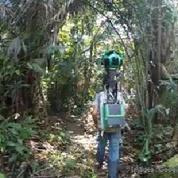 Google cartographie aussi la forêt amazonienne
