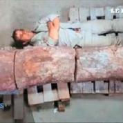 Les restes d'un dinosaure géant découverts en Argentine