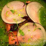 Recette QOOQ : Ceviche de saumon, pomme et mache