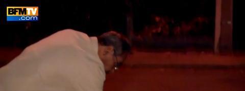 Un pitbull blesse quatre enfants au Havre