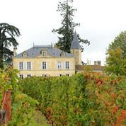 Vendanges au Château Cheval Blanc : 2013, un millésime de bon vigneron
