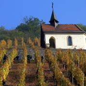 Vin : Le choix de la biodynamie