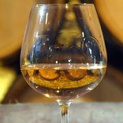 Les amateurs éclairés de vin ont leurs journées en Bourgogne
