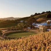 Napa Valley : les conséquences du séisme sur le marché viticole